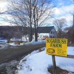 Sugarbush Farm, Woodstock VT. Cheese and maple syrup tasting at a charming VT farm.