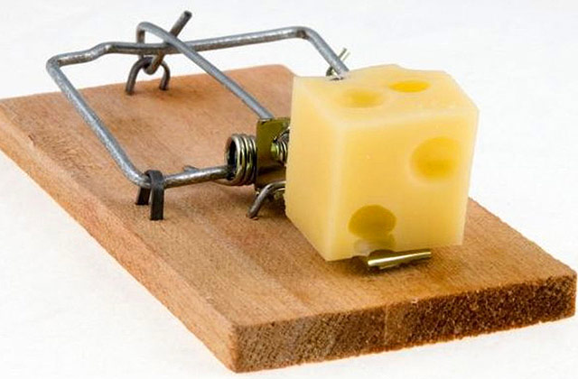 Unconventional mousetrap. Oh. No. A mouse in the house. But not a man. This called for fast action. Some questions are better left unasked. And unanswered.