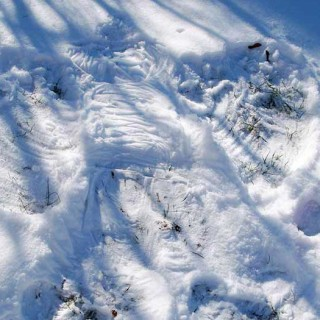 "Snow angels in disguise. Do you believe in angels? I do. Amazing true story from a dear friend of mine. Hebrews 13:2 ""some have entertained angels unawares"""