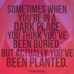 Buried or Planted? Sometimes when you're in a dark place you think you've been buried. But really, you've been planted.