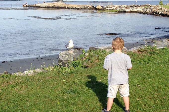 My little stalker. Never knew when I dreamed of having my sweet little babies that I'd bring a stalker into this world. Hudson, my little seagull stalker.