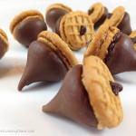 Peanut Butter & Chocolate Acorns