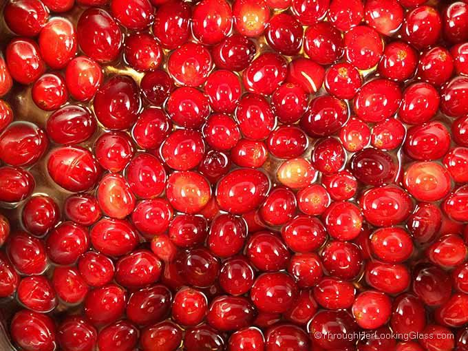 "Lime Sugared Cranberries: gourmet snacking, gift baskets, garnishing cheesecake, ice-cream & holiday drinks. Cheese boards & appetizers. They ""pop"" in your mouth: sweet & mouth-puckeringly tart."
