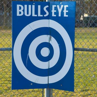 Bullseye: true story. I get such a kick writing about things that actually happen. This actually happened to dear friends of mine, and you just can't make this stuff up.