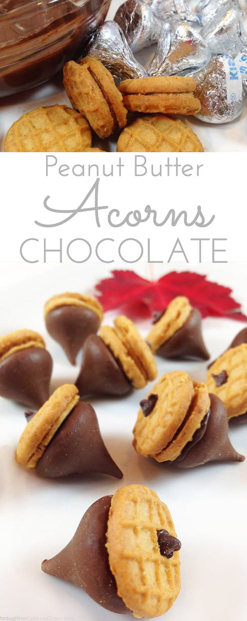 Peanut Butter & Chocolate Acorns. Perfect little fun bite for kid ...