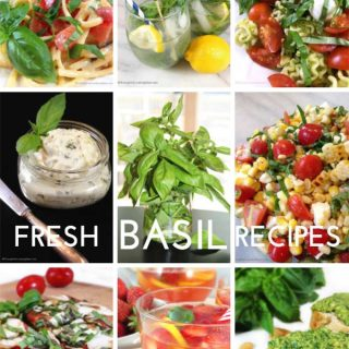 Best Garden Fresh Basil Recipes