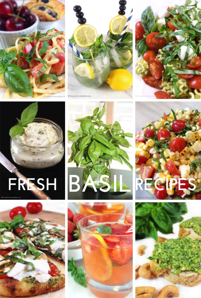 Best Garden Fresh Basil Recipes - Through Her Looking Glass