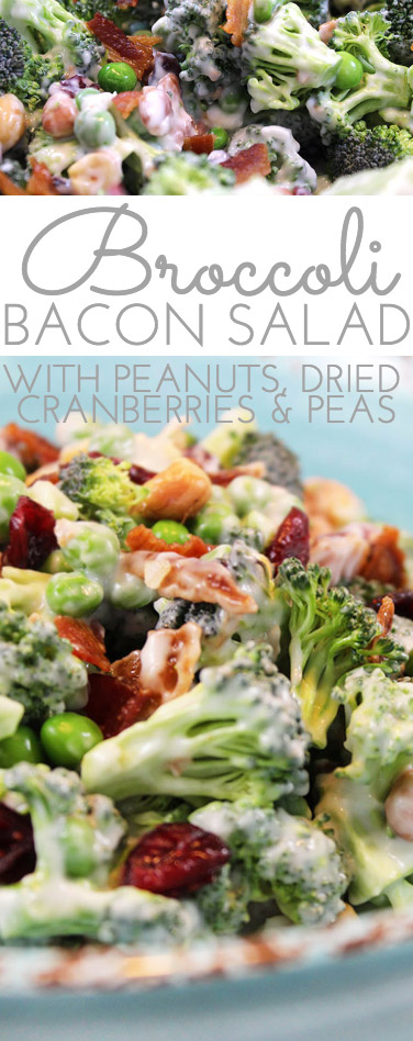 Crunchy Broccoli Salad with Bacon is the perfect side dish for all your picnics and barbecues this summer! It combines surprising ingredients - salty and sweet - making for a yummy new salad that won't wilt!